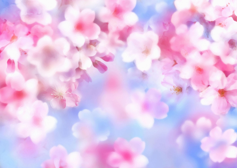 flower-back1470[1]